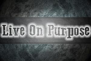 liveitpurpose